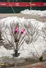 DSC_9027 (kabatskiy) Tags: cty street snow construction constructionarea trees
