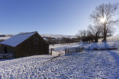 More snow......(1) (Blue Pelican) Tags: fields snow sheep glossop derbyshire barn trees j5 6713mm contrejour