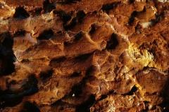 Serie of textures : Rock and water (annabuni) Tags: serie textures rock water reflets et couleurs orangées paroi rocheuse macro macrophotographie macrophoto nature géologie geology anna bunichon buni b onnalua annarchie tamron lens 90mm f28 vi usd sony slta58