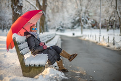 """B1003070 (sswee38823) Tags: """"seansweeneyphotographer"""" """"seansweeney"""" dorothy girl youngwoman woman female pretty beautiful cute winter snow umbrella smile sunglasses face bench park morning lady boots gloves bokeh boston bostonma bostonpublicgardens bostonpublicgarden city newengland red redumbrella leica leicam leicacamera leica50mmf95 m10 leicam10 leicacameraagleicam10 noctiluxm50mmf095asph noctiluxm109550mmasph noctilux095 noctilux noc noctiluxm109550asph leicanoctiluxm50mmf095asph rangefinder outdoor outdoors outside 095 f95 50mm 50 portrait"""