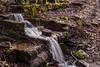 Waldwasser... (st.weber71) Tags: wald wasser bach bachlauf lzb langzeitbelichtung natur outdoor wasserlauf laub bäume landschaft landscape deutschland germany nrw d800 graufilter nikon