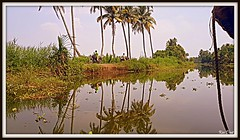20180209_120708 (Uner Villa 5) Tags: india kerala backwaters alleppey cochin trivandrum varkala kovalam taj mahal kumarakom sub continent jungle quality surroundings world maharajah gypsy princess hindu hindi asia travel indie religion brahma shiva ganesh kings travelphotography national geographic gods own country