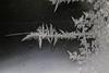 DSC_7800 (harynjk23) Tags: frostwork winter freez jégvirág tél macro nikon d5300 extension tubes