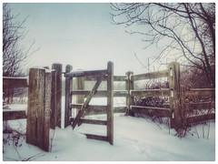 Gate on Newton Rd, Birmingham B43 (hussey411) Tags: photographey photography iphonephotography birmingham uk