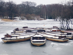 No Boating (peterphotographic) Tags: p3020271cb2filmnc1aedwm olympus tg5 tough ©peterhall hollowponds snaresbrook wanstead walthamstow eppingforest eastlondon london england uk britain camerabag2 water pond lake ice boat rowingboat frozen freeze cold winter noboating