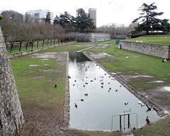 Parque de la Taconera Pamplona 04 (Rafael Gomez - http://micamara.es) Tags: parque de la taconera pamplona navarra