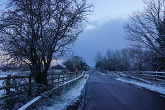 Winter Way (JamieHaugh) Tags: clevedon northsomerset england uk gb greatbritain outdoors sony a6000 winter way road route path trees cold color colour nature bridge fence lines blue