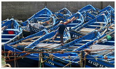 Finding his boat - Essaouira, Morocco (TravelsWithDan) Tags: candid streetphotography morocco essaouria boats blue fisherman harbor tied ropes rowboats canong16
