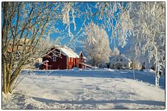 Nannestad 9. januar 2018 (#4) (Krogen) Tags: norge norway norwegen akershus romerike nannestad winter vinter landscape landskap krogen fujifilmx100