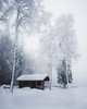 winter-2 (Nippe16) Tags: winter snow landscape frost ice moody nature outdoor finland suomi mood atmosphere
