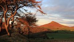 Light Through The Trees ... 7DWF ... Landscape (kpce1960) Tags: light shadow clouds colour color landscape hillside canon 7d tree