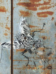 Fly (markb120) Tags: graffiti wall paint drawing art
