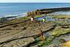 Low tide at Pelabuahan Waikelo, Sumba Barat Daya (Sekitar) Tags: indonesia sumba barat daya ntt nusatenggaratimur kleinesundainseln lessersundaislands east low tide pelabuahan waikelo harbour earthasia