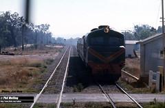 J550 X1026 (RailWA) Tags: railwa philmelling joemoir x1026