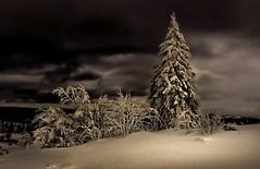 Berg der Kräfte.......... (Toledo 22) Tags: freiburg white ice schnee snow kandel night berg blackforest