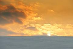 0712 Sea Of Snow (Hrvoje Simich - gaZZda) Tags: outdoors noperson clouds orange winter snow sun croatia slavonia europe nikon nikond750 sigma150500563 gazzda hrvojesimich