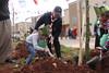 Dikili Bir Ağacın Olsun (yetimvakfi) Tags: reyhanlı hatay ağaç suriye dikili bir ağacın olsun