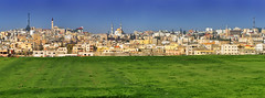 Panorama view from the city of Madaba - Jordan. (hanna_astephan) Tags: jordan jordania jordanien madabadistrict madaba travel tourism cityscape field