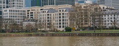 Mainufer2 (R. Henne) Tags: frankfurt mainufer