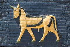 Ishtar Gate (Replica),Babylon (2).jpg (tobeytravels) Tags: iraq babylon babel mesopotamia akkadian amorite hammurabi assyrian neobabylonian hanginggardens achaemenid seleucid parthian roman sassanid alexanderthegreat nebuchadnezzar sargon chaldean hittites sennacherib xerxes