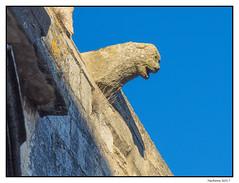 2017-01-11_Venasque-0049.jpg (Hacheme 26) Tags: détailsarchitecturaux gargouille eglise edificereligieux architecturebâtiments venasque provencealpescôtedazur france fr