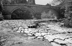 Cupola Bridge (robertadams11) Tags: 4x5 mpp fp4