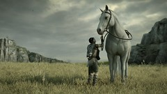 WAIT HERE (Ninjerello) Tags: shadowofthecolossus sotc remake wallpapers bluepointgames wanderer agro colossus colossi photomode ps4 sonyjapanstudios bestscreenshot
