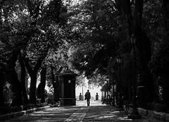 I Walk Alone (thedailyjaw) Tags: spain spanish rota ronda cadiz european architecture street people europeans euro trip travel d610 nikon 85mm