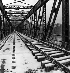 Cyclorail (touflou) Tags: cosnesurloire corse railway railroad rail bridge pont loire nièvre