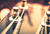 Fastener (Maria Eklind) Tags: dof string head gitarr depthoffield bokeh spegling reflection macromondays closeup macro tuningpeg fasteners fästanordning guitar wood