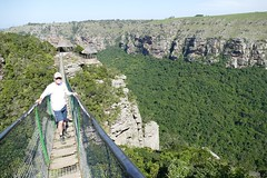 at Oribi Gorge, KwaZulu-Natal