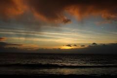 Horizonte Zen (JoFigueira) Tags: madeira madeiraisland ilhadamadeira mar sea nuvens clouds redclouds sol sun sunset pôrdosol entardecer dusk céu sky gaivotas seagulls atlântico atlantic ribeirabrava
