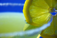 "Limoncello with a slice of ""Citrus"" (rdavo58) Tags: macromonday ""citrus"" macromondays citrus hmm limoncello"