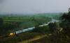 Chugging along (Debmalya Mukherjee) Tags: trains railway indianrailway green blue landscapes maharastra kamshet debmalyamukherjee canon550d 18135