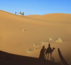 Mirage (Alex L'aventurier,) Tags: saharadesert sahara sand sable shadow ombre sky ciel blue bleu merzouga ergchebbi maroc morocco chameau chameaux camels safari dunes people