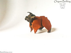 Origami Bulldog - Barth Dunkan. (Magic Fingaz) Tags: anjing barthdunkan chien chó dog gremlins hond hund köpek origami perro pies пас пес собака หมา 개 犬 狗