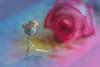 Le petit prince - Antoine de Saint-Exupéry (babs van beieren) Tags: macromonday lepetitprince myfavoriteread hmm rose crown 7dwf wednesdaymacroorcloseup