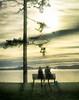 The Mystery of the Blue Pail :)) (Natalia Medd) Tags: blue pail couple sea ocean iphone photoimpressionism sitting bench tree sunrise clouds landscape sun calmness tranquility peaceful shadow rain blur romance