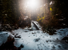 Mystical (Croosterpix) Tags: nature landscape waterfall winter snow light trees mystic sony a7r nikkor1835 italy alps