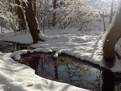 January - Sunrise on the brook (Stans Gallery) Tags: sunlight snow brook stream creek water waterscape trees winter january white woods forest wet snowscape shadows reflections