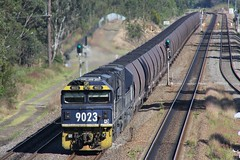 9023 and 9005 pull loaded ER484 PN coal through Metford (bukk05) Tags: 9023 railpage:class=52 railpage:loco=9023 rpaunsw90class rpaunsw90class9023 9005 90class gt46cwm emd16710g3a robertwindle kevinbarry er484 metford wagons explore export engine emd electromotivediesel railway railroad railpage rp3 rail railwaystation railwaystations train tracks tamron tamron16300 trains photograph photo pn pacificnational pncoal loco locomotive horsepower hp flickr freight diesel dieselelectriclocomotive station standardgauge sg spring signal australia artc zoom canon60d canon coal coaltrain 2017 nsw newsouthwales newcastle cityofnewcastle mainline huntervalley hunter