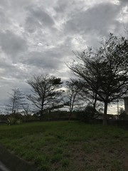 Winter view (光輝蘇) Tags: winter morning kk
