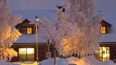 IMG_4370 (Mr Thinktank) Tags: raureif frost