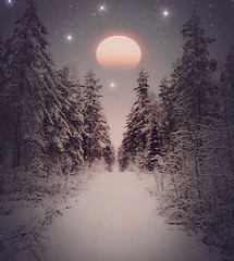 ~ magic night ~  Riddarhyttan, Sweden  iPhone 7 (Tankartartid) Tags: winter vinter kvällsbild nightshot night natt norden nordic västmanland riddarhyttan europe sverige sweden moody mood sky stars moon stjärnor måne träd snö skog woods forest trees snow landsbygd landskap landscape natur nature magiskt magisk redigerad edited magic magical instagram ifttt