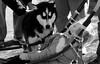 Husky Heroes '18, Morton Arboretum. 7 (EOS) (Mega-Magpie) Tags: canon eos 60d outdoors the morton arboretum lisle dupage usa illinois il america kid people person pet husky heroes bw black white mono monochrome dog