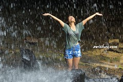 The Heavy Rain Of Wealth (frank.njoku) Tags: arms asia asian clothes dressed drops ecstatic excited fall falling female flowing freedom fresh freshness gesture girl happiness happy healthy holidays joy joyful laughing nature outdoors outside outstretched people rain relax relaxing shower smile smiling soaked thai thailand travel tropical vacation water waterfall wearing wet woman