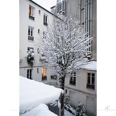 Glissades parisiennes_1 (maxime.ricaud) Tags: paris nikon nikkor afs d810 pleinformat maximericaud ricaud 24 24mm 18