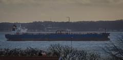 Tanker HS Carmen passing by (frankmh) Tags: ship tanker hscarmen öresund skåne sweden denmark