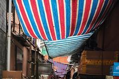 HongKong spirit - There are many colours of neon, buildings in HongKong, but only these colours made HongKong classical, and built memories, called HongKong Spirit. (libinger1997) Tags: waterproofing dirty plastic passengers yaumatei