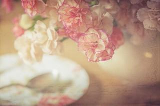 Grocers & Flowers